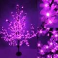 Sakura fa, lila