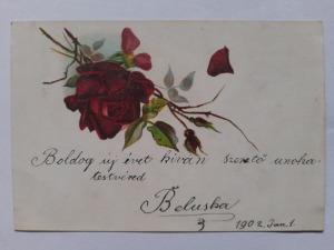 Képeslap, levelezőlap - virágok  rózsa motívum 1902.