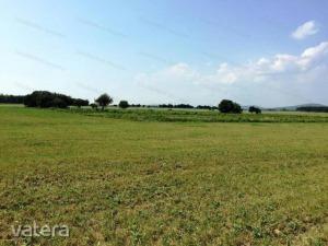 Termőföld, szántó Veszprém