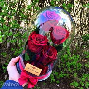 Nagy méretű búrába zárt 4 szálas Örök Rózsa / Forever Rose - Vörös