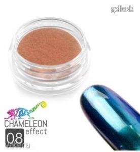 Chameleon Effect #08