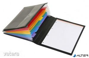 Harmonikamappa, PP, 6 rekeszes, VIQUEL 'Manager Rainbow Class', fekete