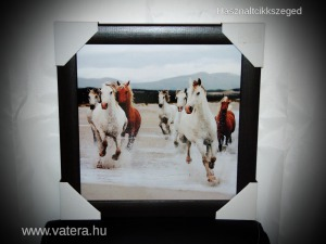 Ló lovas lovak tengerparton fa falikép 36 x 36 cm