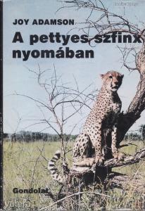 A PETTYES SZFINX NYOMÁBAN